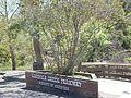 Mariposa Creek Parkway.jpg