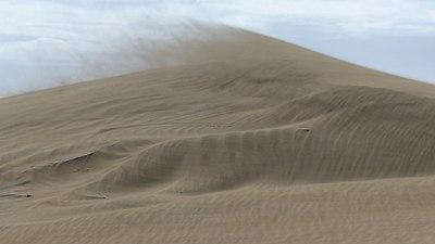 Mas Palomas Desert Storm.jpg