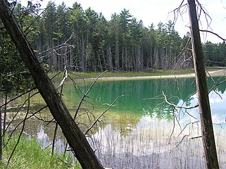 Meromictic lake - McGinnis Lake is a meromictic lake near Peterborough, Ontario.