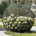Melons in cage, Russia.jpg