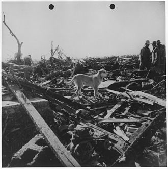 Udall, Kansas - Men and dog inspect rubble in Udall left by May 25, 1955 tornado