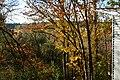 Mercer Slough Environmental Educational Center - view from the 'Treehouse' 01.jpg
