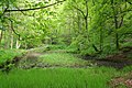 Mill pond, Brearley Wood - geograph.org.uk - 171670.jpg