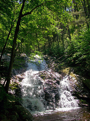 Black Rock Forest - Mineral Springs Falls