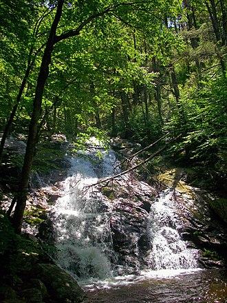 Black Rock Forest - Mineral Springs Falls