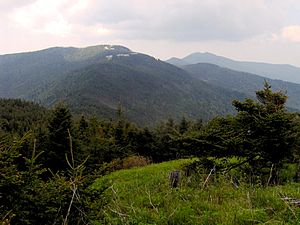 Mitchell-clingmans-peak-nc1.jpg