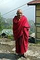 Monk, Rumtek (8064687014).jpg