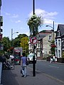 More floral decorations in Mill Road - geograph.org.uk - 891014.jpg