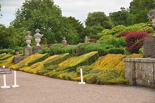 Mount Edgcumbe Gardens (0835)
