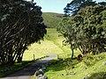 Mount Wellington, Auckland, New Zealand (1).JPG