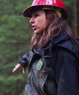 Forester person who practices forestry