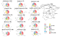 MtDNA haplogroup frequencies by (politically-defined) Spanish Autonomous Regions.png