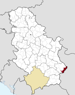 Location of the municipality of Dimitrovgrad within Serbia