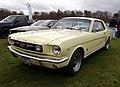 Mustang (4487419246).jpg