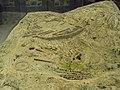 Mycenae 008.jpg