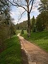 N2 Path.jpg