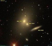 NGC 2830 SDSS.jpg