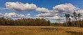 Nationaal Park Drents-Friese Wold. Locatie Dieverzand. Natte plek in een verruigde open plek in het bos 03.jpg