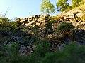 Nature reserve Morkepuertz-7.jpg
