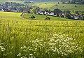 Naturpark-Rhein-Taunus-Kroeftel-JR-E-3355-2019-05-26.jpg