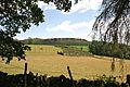 Near Hathersage, Peak District.jpg