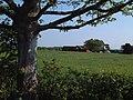 Near Langholme Lane - geograph.org.uk - 170799.jpg