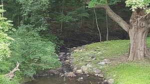 Neepaulakating Creek - Neepaulakating Creek near its headwaters northwest of Lake Neepaulin.