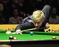 Neil Robertson at Snooker German Masters (DerHexer) 2013-02-02 11.jpg