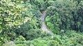 Nelliampathy Ghat Road - panoramio (14).jpg