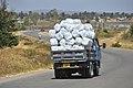 Net Distribution In Mwanza, Tanzania 2016 (31906907856).jpg