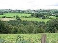 Newly planted oak woodland adj to Whitfield Farm - geograph.org.uk - 347598.jpg