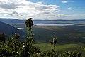 Ngorongoro 2012 05 29 2253 (7500941860).jpg