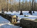 Nichewaug Cemetery, Nichewaug MA.jpg