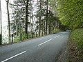 North Loch Tay road - geograph.org.uk - 428855.jpg