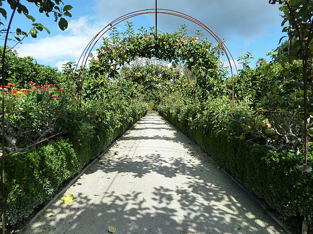File:Northern Gardens - The Lost Gardens of Heligan (9757592012).jpg ...