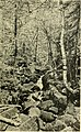 Northward-ho! Covering Maine's inland resorts, Moosehead Lake, the Rangeleys, Belgrade lakes and Poland Spring (1908) (14744273116).jpg