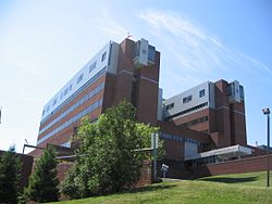 Norwalk Hospital, the most prominent landmark in the neighborhood