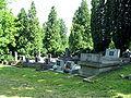 Nowy Cmentarz Zydowski - Przemysl3.jpg