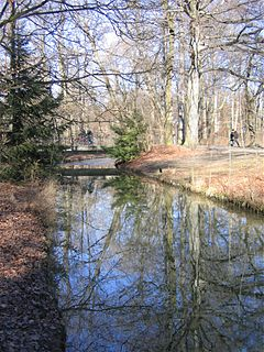 Oberstjägermeisterbach River in Germany