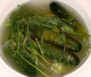 Brining - Cucumbers in brine (dill pickles)