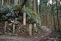 Okunosenbon Yoshino Nara01n4272.jpg