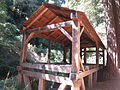 Old-Mill-Park-Mill-Valley-Florin-WLM-6.jpg
