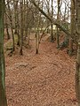 Old clay pits, Cowcroft Woods, Botley - geograph.org.uk - 116401.jpg