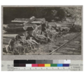 On Gualala River. Railroad track of American Redwood Company. Cross ties made of second growth redwood from trees over 40 years old. Intended for repairs in track and not for shipment. Very poorly made. Several thousand made here in 192.png