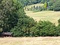 On Reelhall Hill - geograph.org.uk - 1386943.jpg