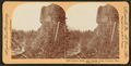 Oneonta Bluffs, near Oneonta Gorge, Columbia River, Oregon, from Robert N. Dennis collection of stereoscopic views.png