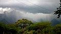 Ooty to Mysore (5905826138).jpg