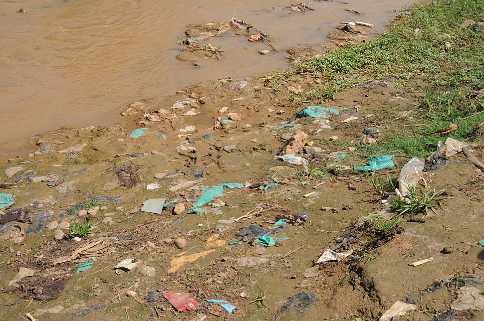 Open defecation along the river bank (6908382463)