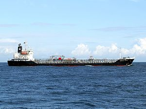 Oriental Orchid p3 approaching Port of Rotterdam, Holland.jpg