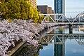 Osaka Loop Line over Yodo River 2016-04-06.jpeg